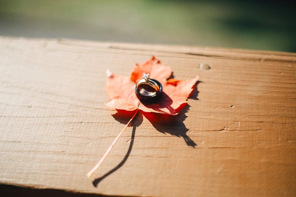 planning seasonal ring photos